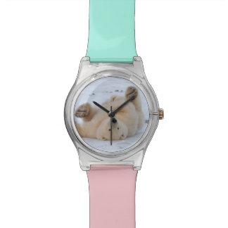 polar bear, Ursus maritimus, cub rolling 3 Wrist Watches
