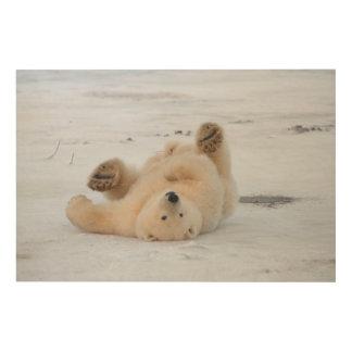 polar bear, Ursus maritimus, cub rolling 3 Wood Prints