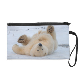 polar bear, Ursus maritimus, cub rolling 3 Wristlet