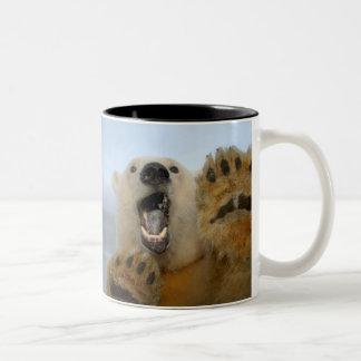 polar bear, Ursus maritimus, curiously looks in 2 Coffee Mugs