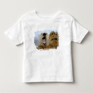 polar bear, Ursus maritimus, curiously looks in 2 Tee Shirt
