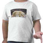 Polar Bear Ursus maritimus) in Churchill T-shirt