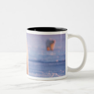 polar bear, Ursus maritimus, large boar on the Two-Tone Coffee Mug