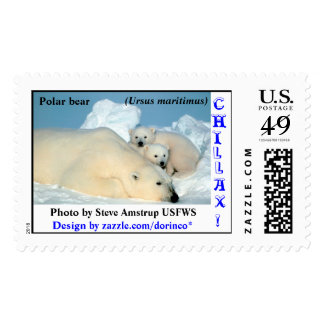 Polar bear, (Ursus maritimus), mother and two cute Postage Stamp