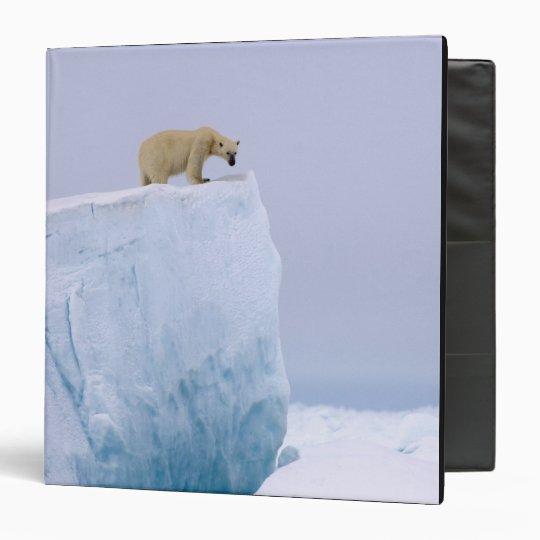 polar bear, Ursus maritimus, on a giant Binder
