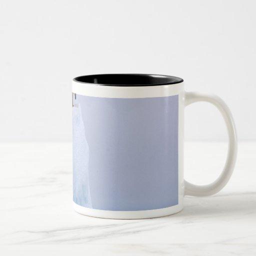 polar bear, Ursus maritimus, on a giant Two-Tone Coffee Mug