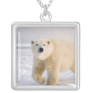 polar bear, Ursus maritimus, on ice and snow, 2 Silver Plated Necklace