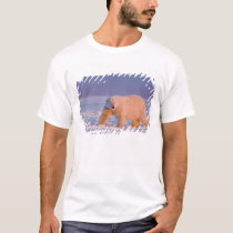 polar bear, Ursus maritimus, on ice and snow, 2 T-Shirt