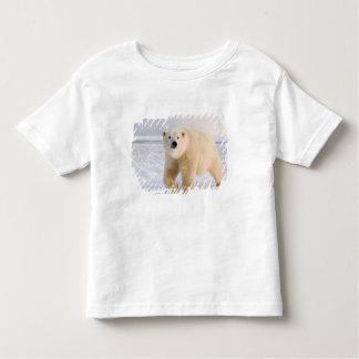 polar bear, Ursus maritimus, on ice and snow, 2 Toddler T-shirt