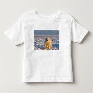 polar bear, Ursus maritimus, on ice and snow, Toddler T-shirt