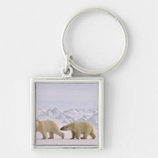 polar bear, Ursus maritimus, pair in rough ice Keychain