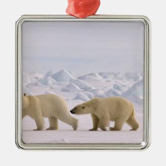 polar bear, Ursus maritimus, pair in rough ice Metal Ornament