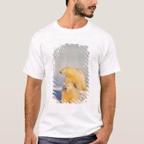 polar bear, Ursus maritimus, sow with cub 3 T-Shirt