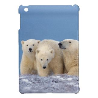 polar bear, Ursus maritimus, sow with cubs iPad Mini Cover