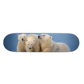 polar bear, Ursus maritimus, sow with cubs Skateboard Deck