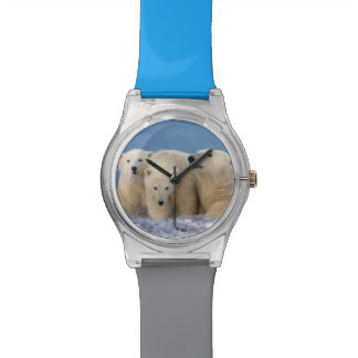 polar bear, Ursus maritimus, sow with cubs Wrist Watches