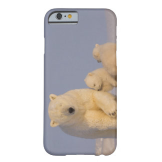 polar bear, Ursus maritimus, sow with newborn 3 Barely There iPhone 6 Case