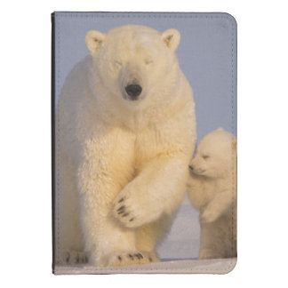 polar bear, Ursus maritimus, sow with newborn 3 Kindle Touch Cover