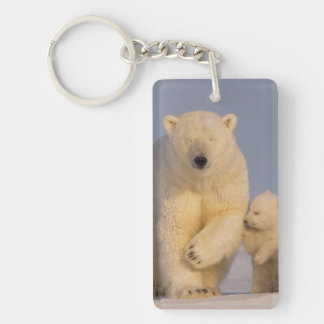 polar bear, Ursus maritimus, sow with newborn 3 Keychain