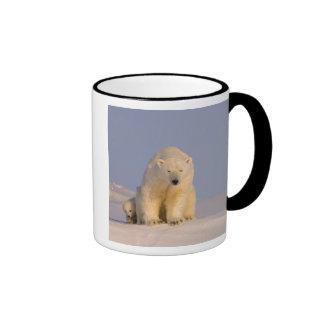 polar bear, Ursus maritimus, sow with newborn Coffee Mug