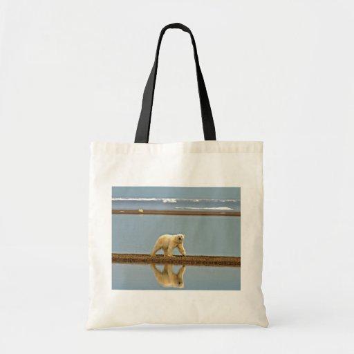Polar bear walking along the coast bags