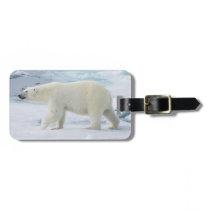 Polar bear walking, Norway Bag Tag