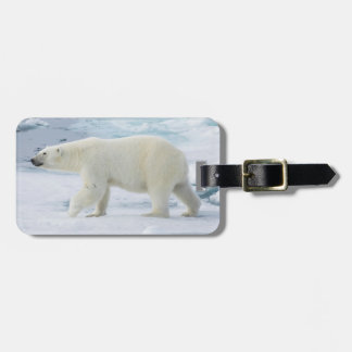 Polar bear walking, Norway Bag Tag