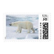 Polar bear walking, Norway Postage