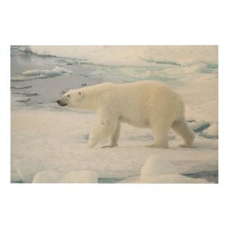Polar bear walking, Norway Wood Wall Art