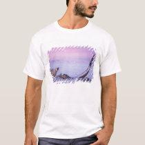 Polar bear with bowhead whale carcass on pack T-Shirt