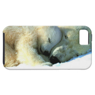 Polar Bear with Cub iPhone 5 Case-Mate Vibe