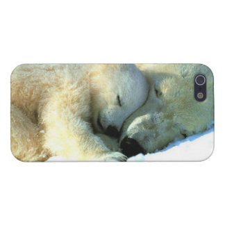 Polar Bear with Cub iPhone 5 Case Savvy Glossy Fin