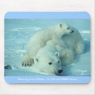 Polar bear with cub mouse pads