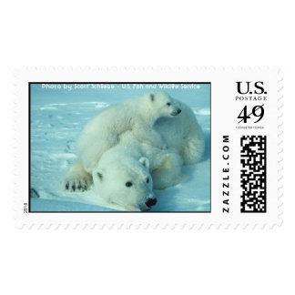 Polar bear with cub postage