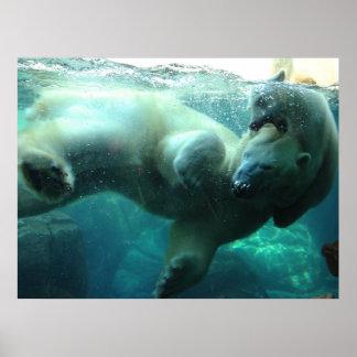 Polar Bear with Cub Poster