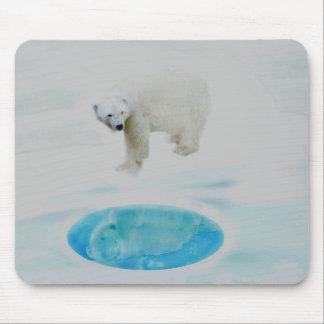 Polar bears alone mouse pad