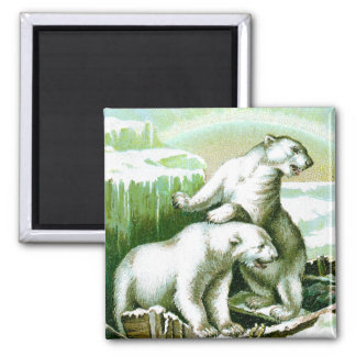 Polar Bears and Northern Lights 2 Inch Square Magnet