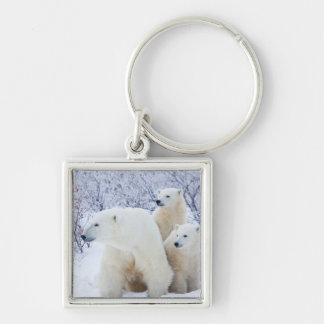 Polar Bears and Two cubs Keychain