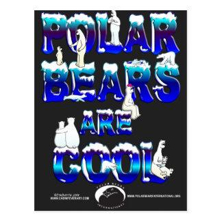 POLAR BEARS ARE COOL POSTCARD