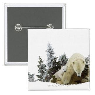 Polar Bears At Wapusk National Park 2 Inch Square Button
