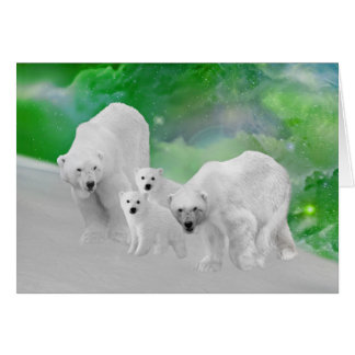 Polar Bears, cubs and northern lights Card