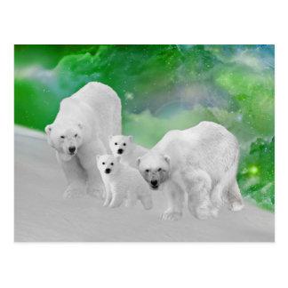 Polar Bears, cubs and northern lights Postcard