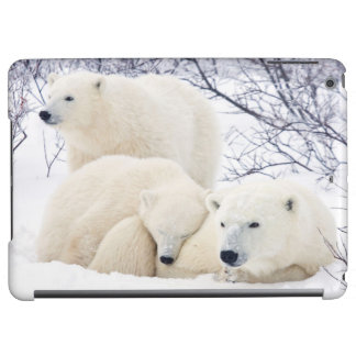 Polar Bears female and Two cubs 3 Cover For iPad Air