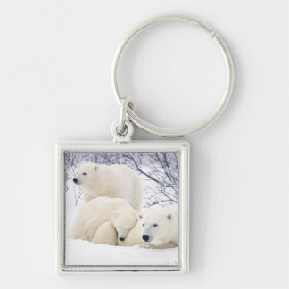 Polar Bears female and Two cubs 3 Keychain