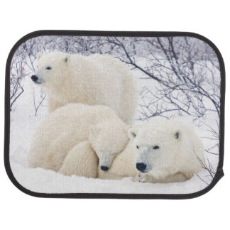 Polar Bears female and Two cubs 3 Car Mat