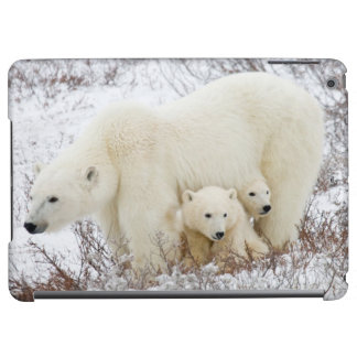 Polar Bears female and Two cubs iPad Air Covers
