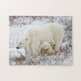Polar Bears female and Two cubs Puzzle