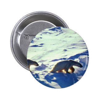 Polar Bears In Cape Lisburne Pinback Buttons
