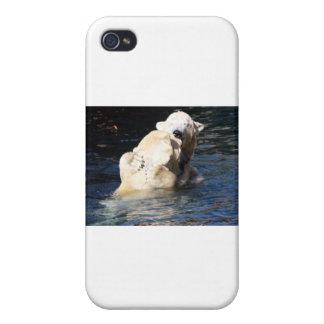 polar bears cover for iPhone 4