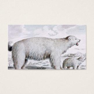 Polar Bears Old Illustration Business Card